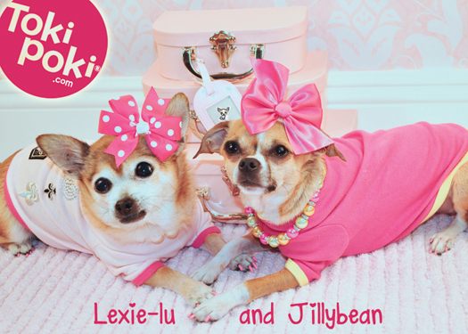 Lexie-lu and Jillybean Toki Poki Buddy Cards