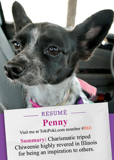 Penny Toki Poki Resume Card