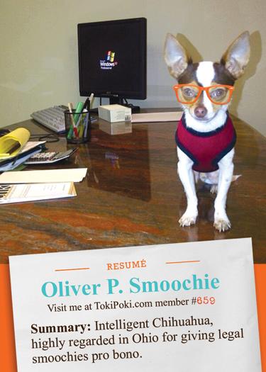 Oliver Toki Poki Resume Card