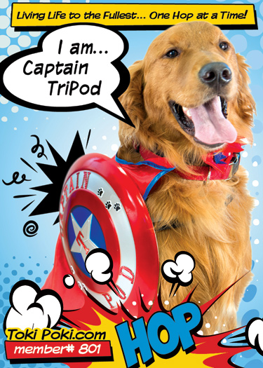 Tripod Toki Poki Superhero Pet Trading Card