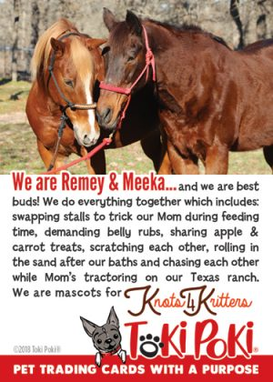 Remey (member #1111) & Meeka (member #1112)