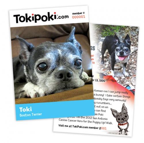 Toki Cancer Awareness Card