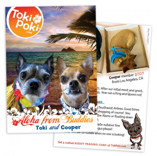 Toki and Cooper Buddy Pet Trading Card