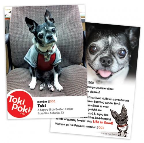 Toki Poki Pet Trading Cards