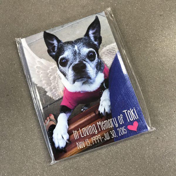 Puppy Up Pack - Toki