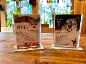 Toki Poki Pet Trading Card Frame