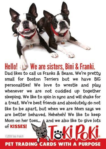 Buddies Bini 1084 & Franki 1081