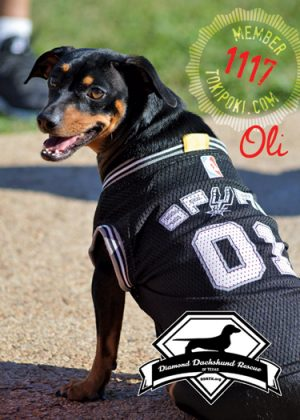 Oli (member #1117)