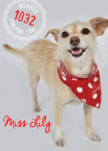 Lily (member #1032)