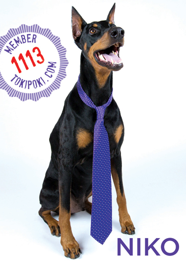 Niko (member #1113)