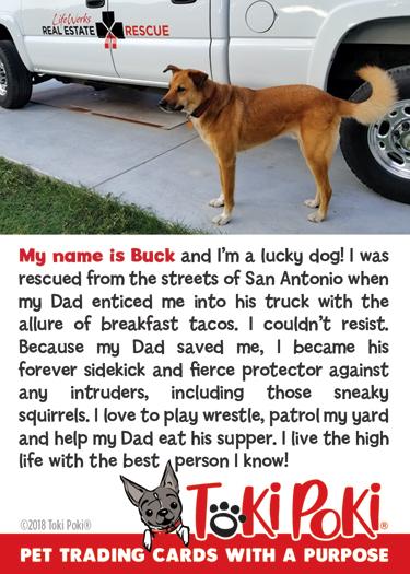 Buck (member #1114)
