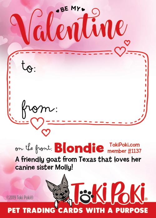 Blondie (member #1137)