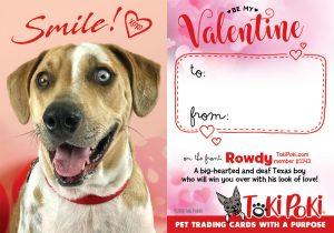 Rowdy (member #1143)