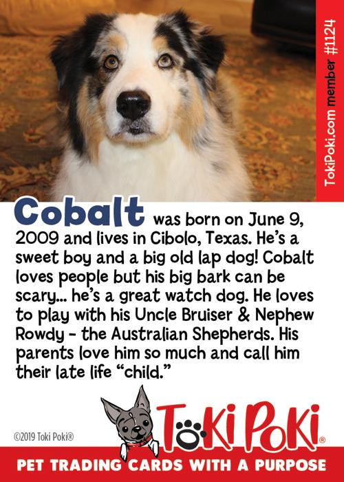 Cobalt (Member #1124)