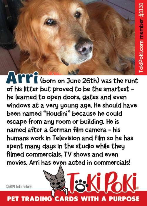 Arri (Member #1131)
