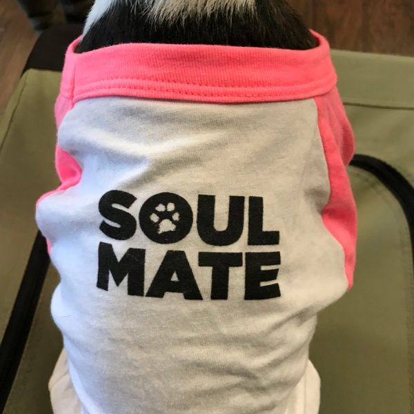 Toki Poki Soul Mate Doggie Tee