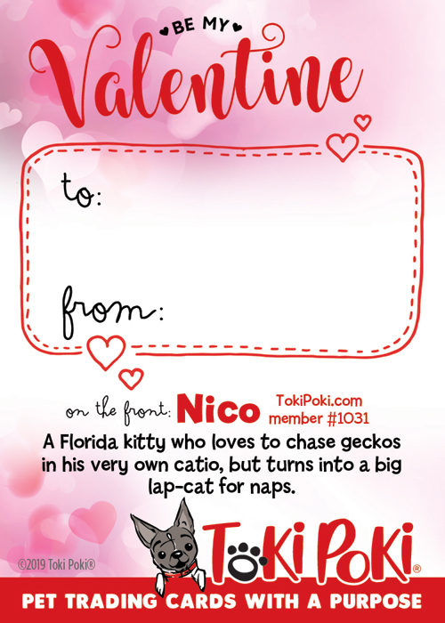 Nico (Member #1031)