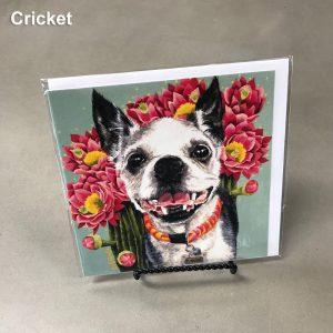 Cricket - Elizabeth Elequin Art Greeting Cards