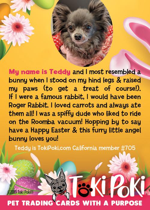 Teddy (member #705)