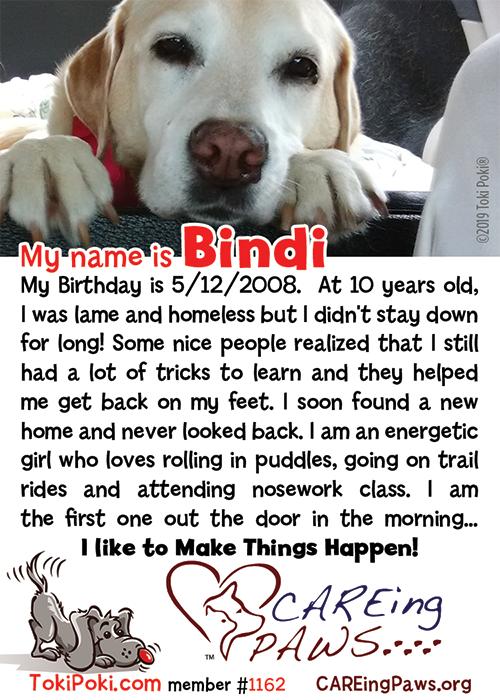 Bindi (Member #1162)