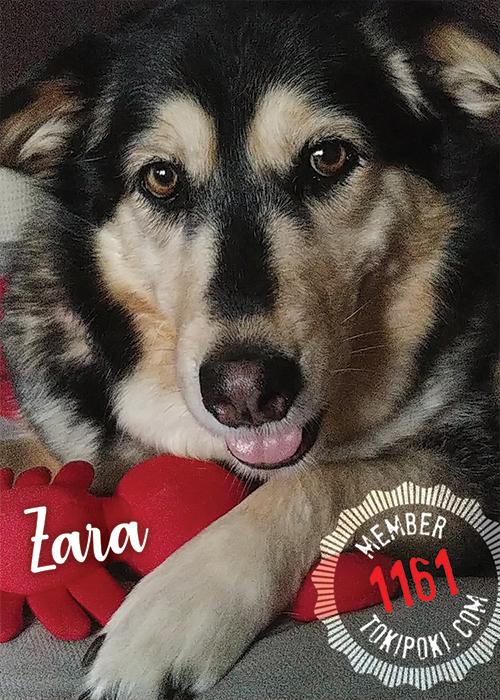 Zara (Member #1161)