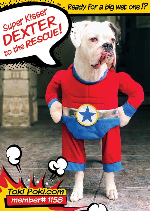 Dexter (Member #1158)
