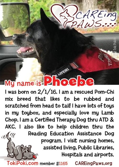 Phoebe (Member #1165)