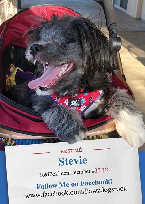 Stevie (member #1172)
