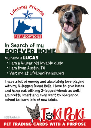 Adopt Me Pet Trading Card