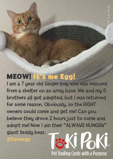 Egg (Member #1085)