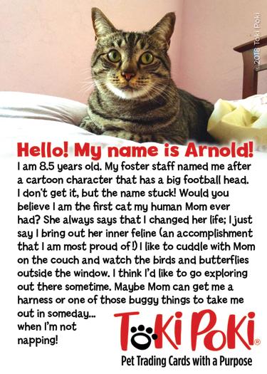 Arnold (Member #1089)