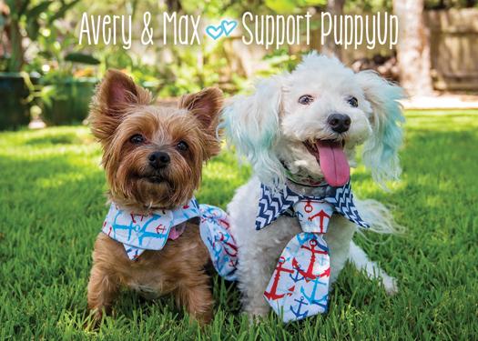 Avery (member #583) and Max (member #582)